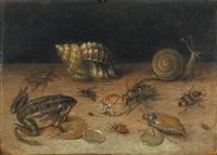 stillleben mit frosch by georg flegel