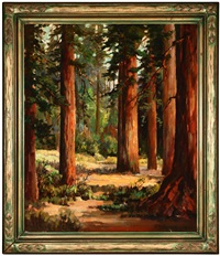redwood trees by john maitland reinhard