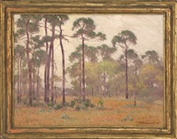a gray day, florida by frank charles peyraud