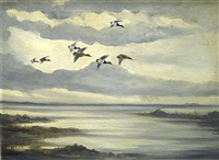 ducks in flight by kenneth smallwood