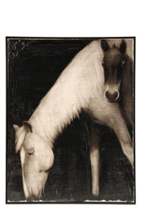 untitled (mare and foal) by joe andoe
