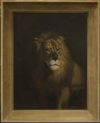 lion by julius moessel