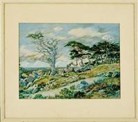 cypress trees, pebble beach by martin baer