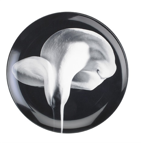 cala lily orchid and flower service plates 3 works by robert mapplethorpe