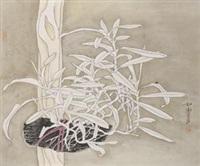 富贵竹 by liang rujie