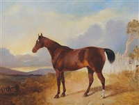 chestnut horse by george jackson