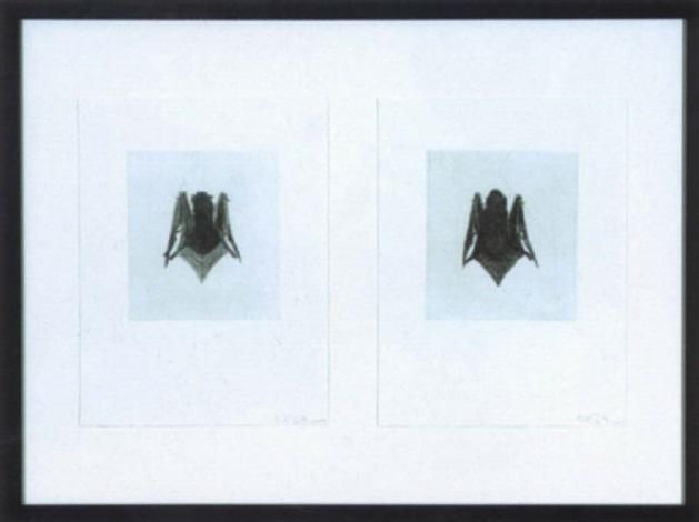 bat by kiki smith