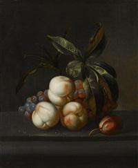 früchtestillleben mit pfirsichen, trauben und pflaume auf einer steinplatte by willem frederik van royen