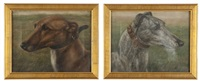 portraits of racing greyhounds (2 works) by edward aistrop