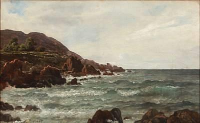 coastal scene from kullen by peter johann p raadsig