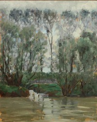tall trees by a river by max nathan