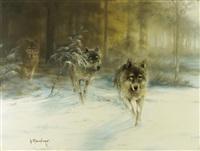 wölfe in verschneiter landschaft by gernot rasenberger