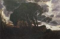 prachtvoller sonnenuntergang mit malerischer baumgruppe by emil haunstetter