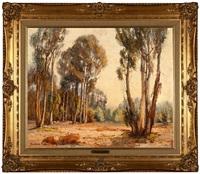 eucalyptus by evylena nunn miller