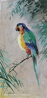 green-winged macaw (+ 3 others; 4 works) by harry g. aitken