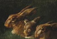hares by niels peter rasmussen