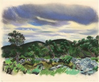 dalmatinische landschaft mit bewegtem himmel by richard ziegler