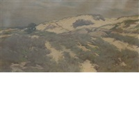 sand dunes by ben foster
