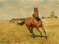 grazing horses near a mill by vilhelm theodor fischer