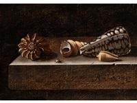 stilleben mit meeresmuscheln auf einer steinplatte by adriaen s. coorte