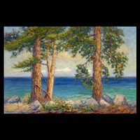 a view of lake tahoe by frederick carl smith