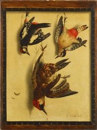 trompe-l'oeil mit drei beutevögeln by cornelis (bilcius) biltius