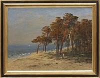 flickor vid kusten by julius wentscher