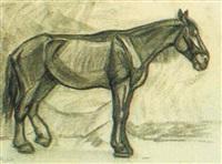 pferd by mathilde sohler