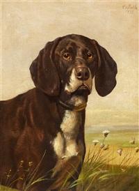 hundeporträt by caspar von reth