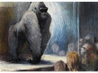 gorilla im tierpark hellabrunn by armin meyer