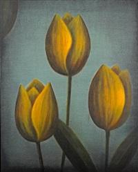 tulipifera by wade hoefer