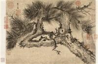 pine tree by sa tianxi
