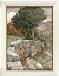 hügelpartie mit steinmauer by hans lietzmann