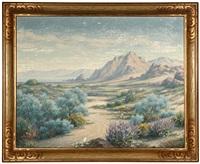 california desert in the spring by marius smith