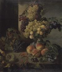 früchte des spätsommers und herbstes auf steinplatte by frederike frey