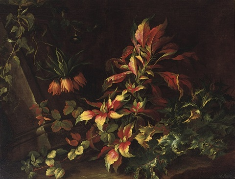 a forest floor with flowers and distels by niccolino van houbraken