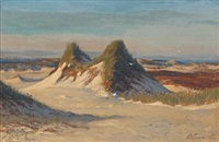 seaside from sylt with dunes and view over the sea by franz korwan