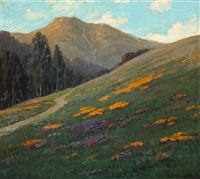 mt. tamalpais with poppies by jean j. pfister