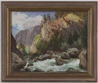 rivière de montagne, l'été by angelo abrate