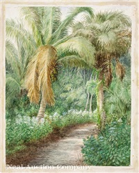 florida landscape with palm trees by laura woodward