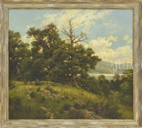 adirondack landscape by robert melvin simmers