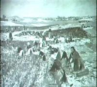 markische landschaft mit bauerinnen bei der feldfruchternte. by max köcke-wichmann