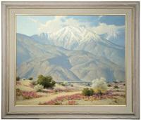 desert contrast by karl albert