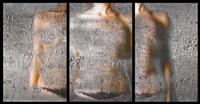 devastation 2 (triptych) by mania akbari