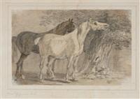 baumlandschaft mit zwei pferden by johann conrad gessner