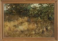 böschung mit vertrocknetem gras und bäumen by thomas herbst