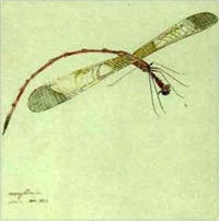 mermyllianida (+ 3 others, various sizes; 4 works from study of insects) by walter spies