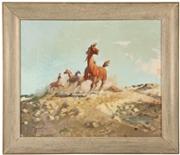 scent on the wind, horses by jack n. swanson