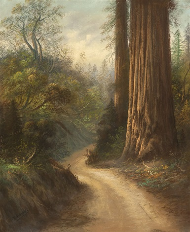 redwood trees in a landscape by carl sammons