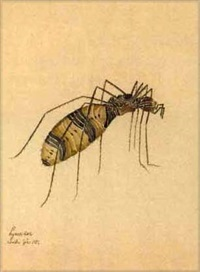 hycosidae (+ 3 others, various sizes; 4 works from study of insects) by walter spies